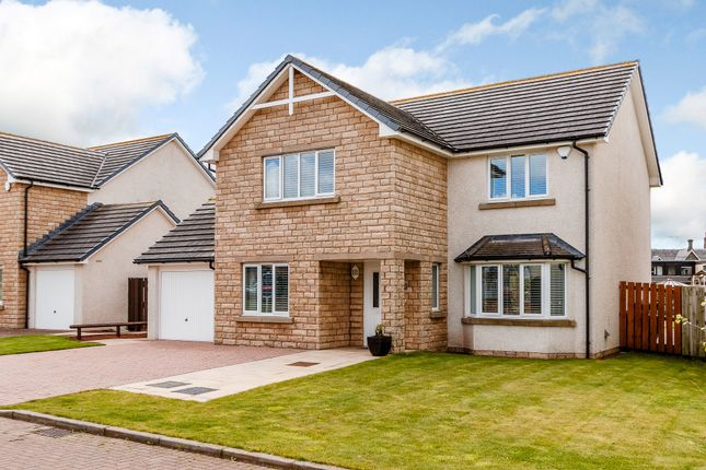 Thumbnail Detached house for sale in Springfield Avenue, Duns