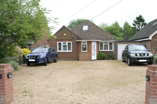 Thumbnail Detached bungalow to rent in White Lane, Ash Green, Aldershot