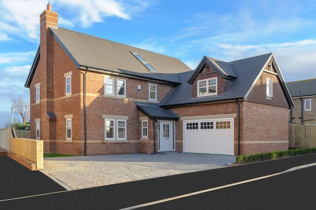 Thumbnail Detached house for sale in Plot 2, Hollyhock Cottage, Cheviot Meadows, Acklington, Northumberland