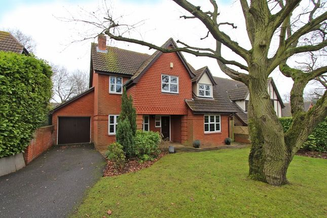 Thumbnail Detached house for sale in Sunny Road, Hockley