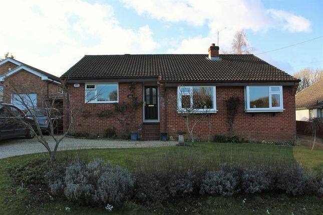 Thumbnail Detached bungalow for sale in Flowers Drove, Lytchett Matravers, Poole