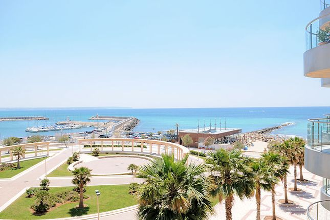 Mallorca Majorca Hotels Apartments 917