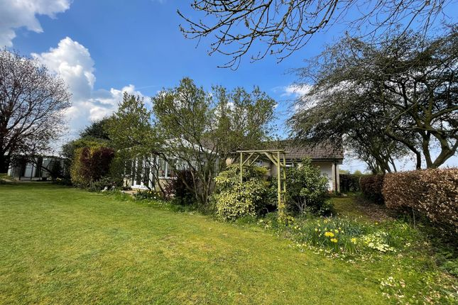 Thumbnail Detached bungalow for sale in Thingley, Corsham