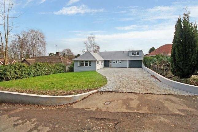 Thumbnail Detached bungalow for sale in Whitehall Drive, Ifield, Crawley