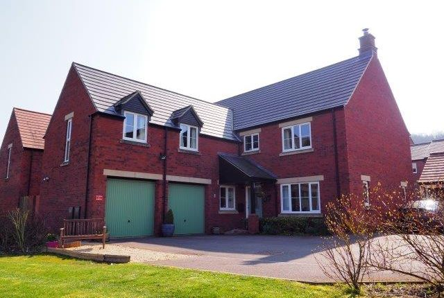 Thumbnail Detached house for sale in White Horse Road, Marlborough