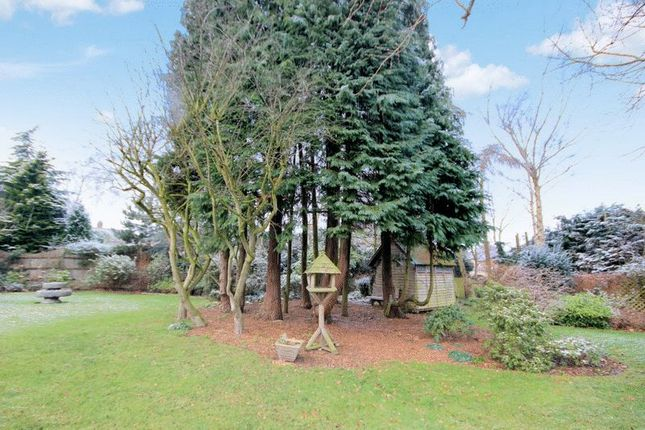 Photo 18 of Rowley Bank Gardens, Stafford ST17