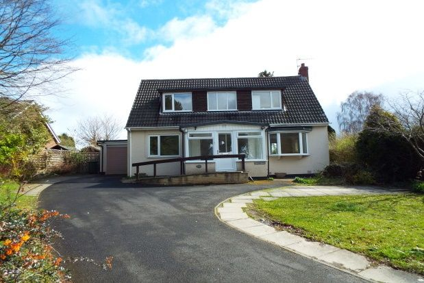 Thumbnail Detached bungalow to rent in Western Way, Ponteland, Newcastle Upon Tyne