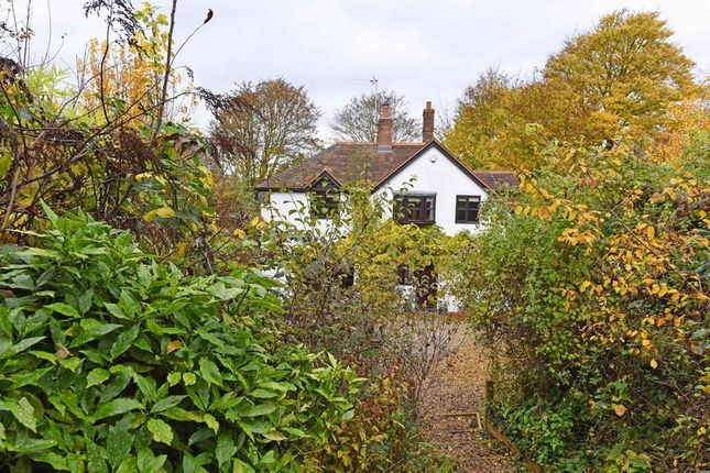 Thumbnail Semi-detached house for sale in Aldermaston Road, Sherborne St. John, Basingstoke