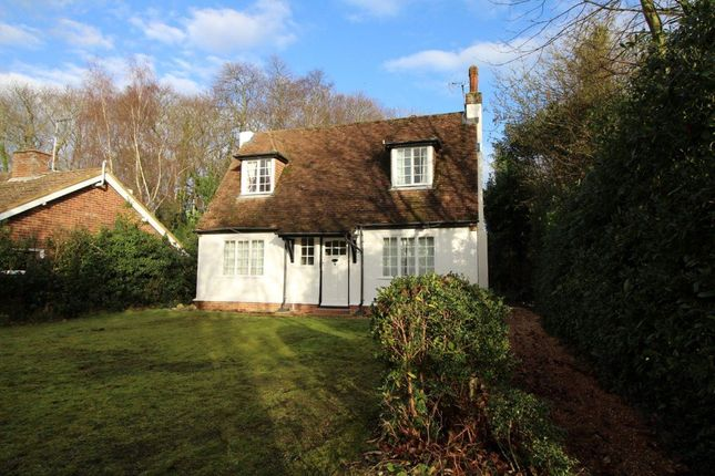 Thumbnail Property to rent in St. Stephens Hill, Canterbury