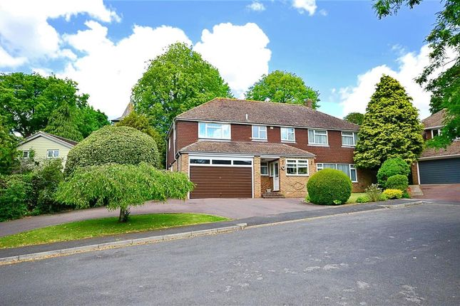 Thumbnail Detached house for sale in Ashley Close, Brighton, East Sussex