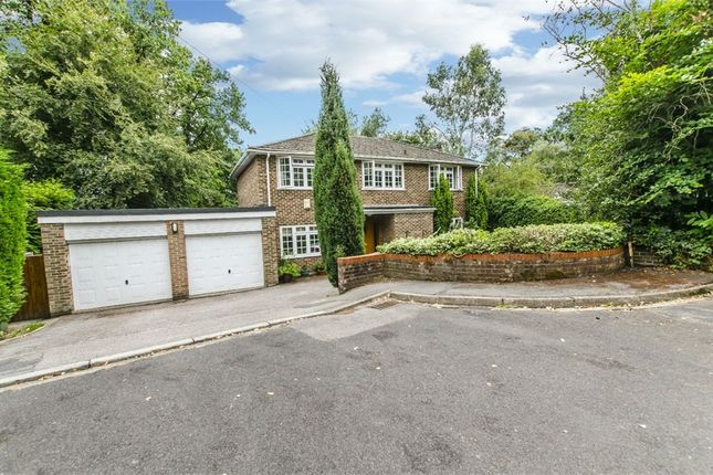 Thumbnail Detached house to rent in Hocombe Park Close, Chandlers Ford, Eastleigh, Hampshire