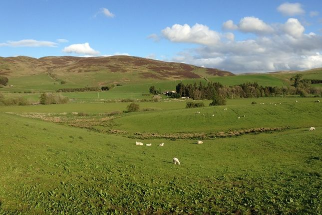 View Of Valley of Ettrick Valley, Selkirk TD7