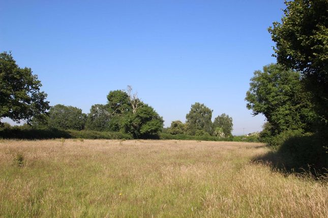 Thumbnail Land for sale in Allensmore, Hereford