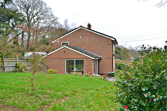 Thumbnail Property to rent in Forest Road, Colgate, West Sussex