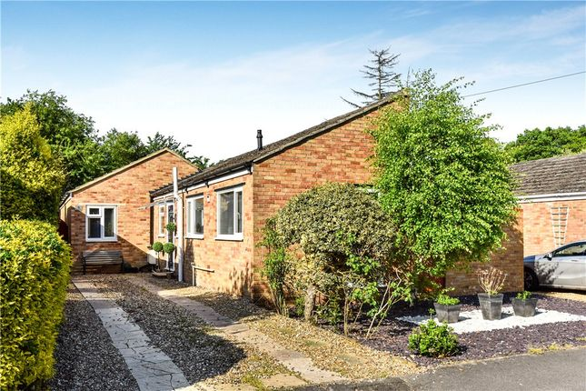Thumbnail Bungalow for sale in Broomsquires Road, Bagshot, Surrey