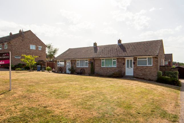 Thumbnail Bungalow for sale in Church Lane, Hartley Wintney, Hook