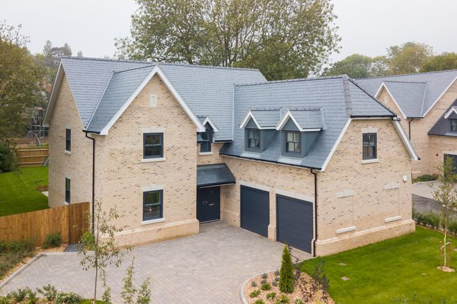 Thumbnail Detached house for sale in Whitehall Lane, Bishop's Stortford
