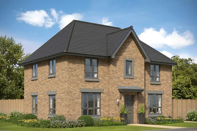 "Thumbnail Detached house for sale in ""Craigston"" at Countesswells Park Road, Countesswells, Aberdeen"