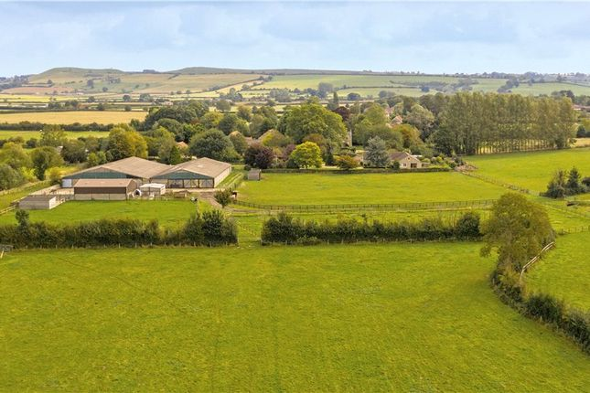 Thumbnail Equestrian property for sale in Home Farm Lane, Rimpton, Yeovil, Somerset