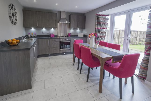 "Thumbnail Detached house for sale in ""Carrick"" at Red Deer Road, Cambuslang, Glasgow"