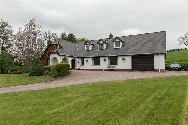 Thumbnail Detached house for sale in Bresagh Road, Lisburn