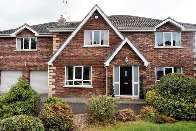 Thumbnail Detached house for sale in Millgrove Park, Eglinton, Derry / Londonderry