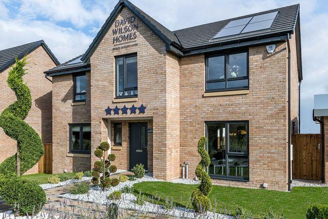 "Thumbnail Detached house for sale in ""Glenbervie"" at Meadowsweet Drive, Edinburgh"