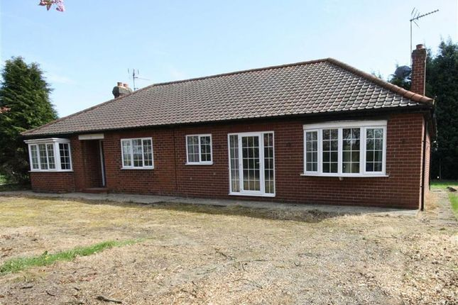 Thumbnail Bungalow to rent in Newfield Lane, South Cave
