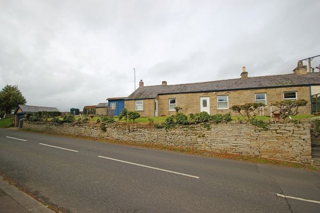 Thumbnail Cottage for sale in The Dene, Allendale, Hexham