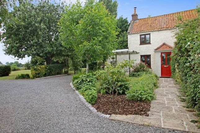 Thumbnail Semi-detached house to rent in Coxley Wick, Wells