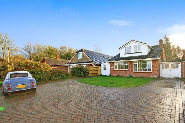 Thumbnail Detached bungalow for sale in Charlton Mead, Charlton Marshall, Blandford Forum, Dorset