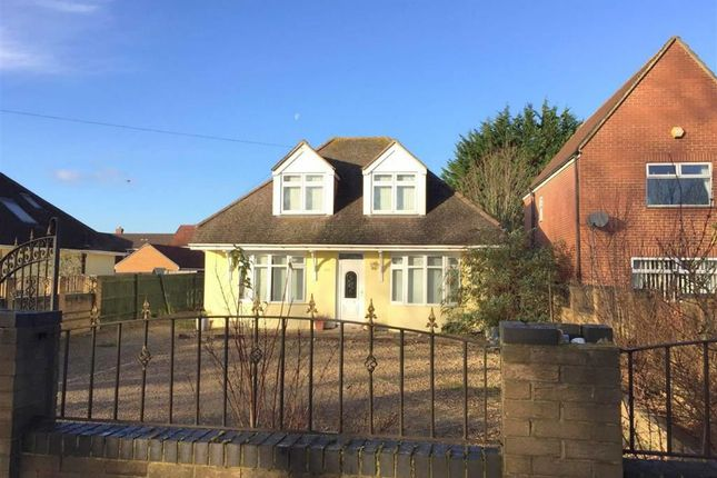 Thumbnail Detached bungalow to rent in Cricklade Road, Swindon, Wiltshire