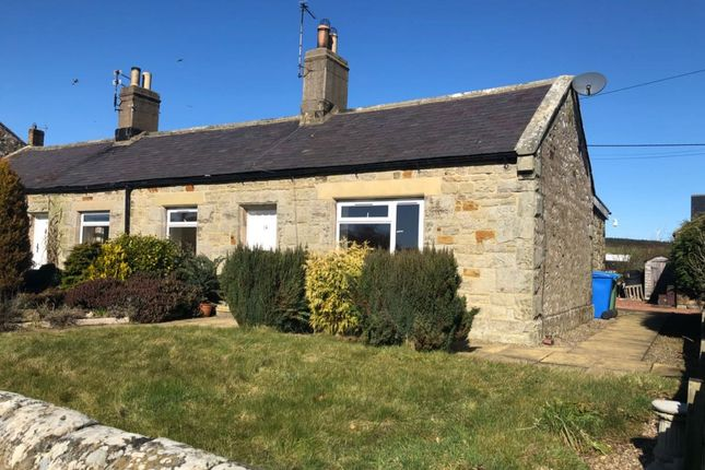 2 bed semi-detached bungalow to rent in South Charlton, Alnwick, Northumberland