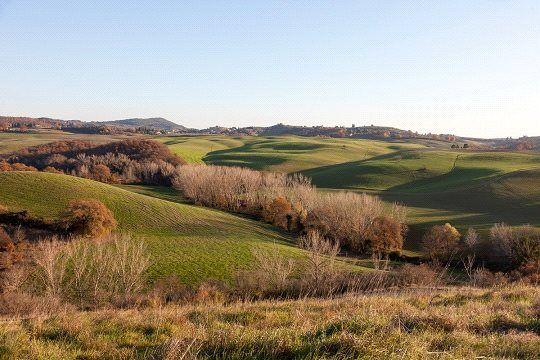 Picture No. 04 of Borgo Toscano, San Giovanni D'Asso, Tuscany