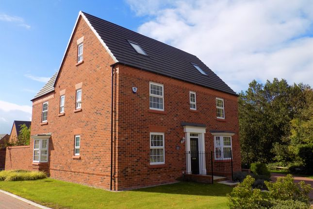 Thumbnail Detached house for sale in Alpine Echoes Close, Elworth, Sandbach