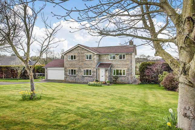 Thumbnail Detached house for sale in The Orchard, Hepscott, Morpeth