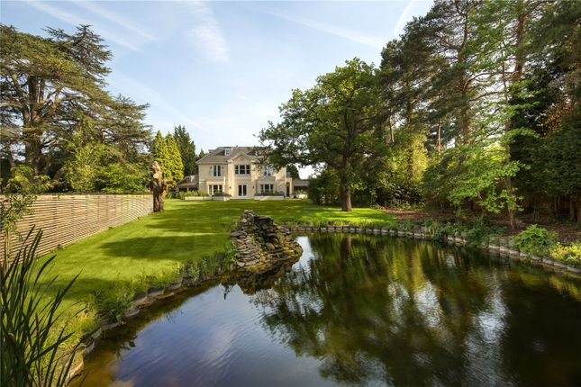 Thumbnail Detached house for sale in New Road, Esher, Surrey