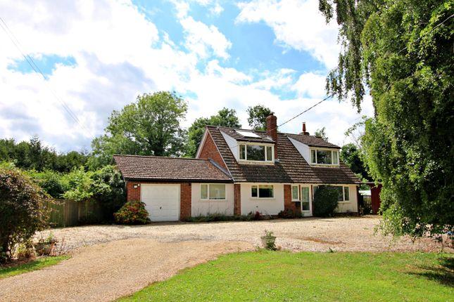 Thumbnail Detached house for sale in Dereham Road, Westfield, Dereham