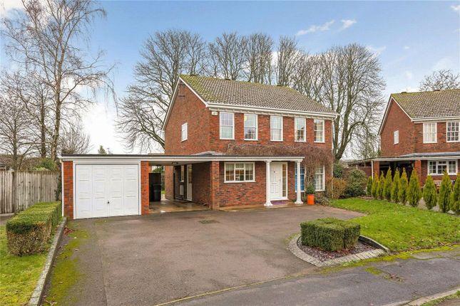 Thumbnail Detached house for sale in Dukes Close, Alton, Hampshire