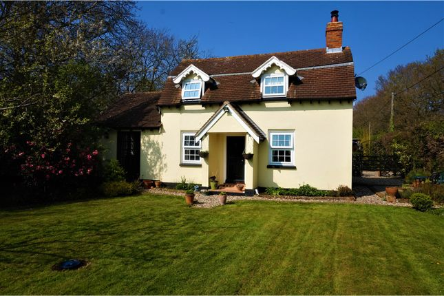 Thumbnail Detached house for sale in Chapel Lane, Colchester