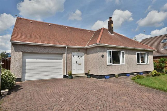 Thumbnail Detached bungalow for sale in The Avenue, Leigh
