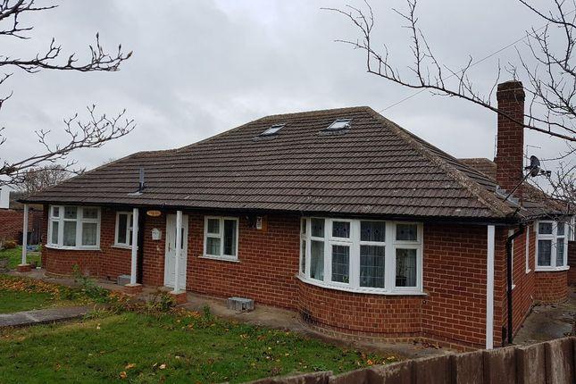 Thumbnail Detached bungalow for sale in Beech Grove, Abington, Northampton