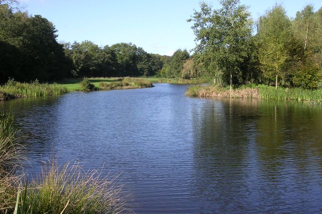 Thumbnail Land for sale in Penhurst Lane, Penhurst, Near Battle, East Sussex
