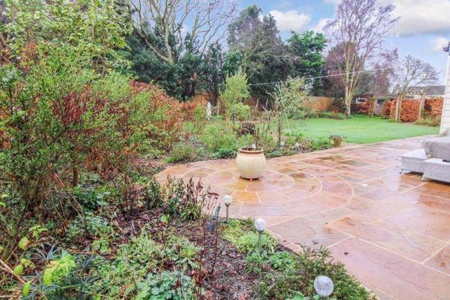 Garden(3) of The Close, Corton, Lowestoft NR32