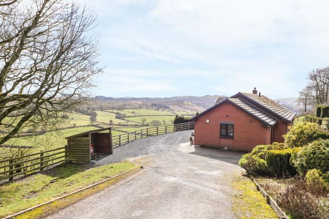 3 bed detached bungalow to rent in Vrongoch, Llandrindod Wells LD1