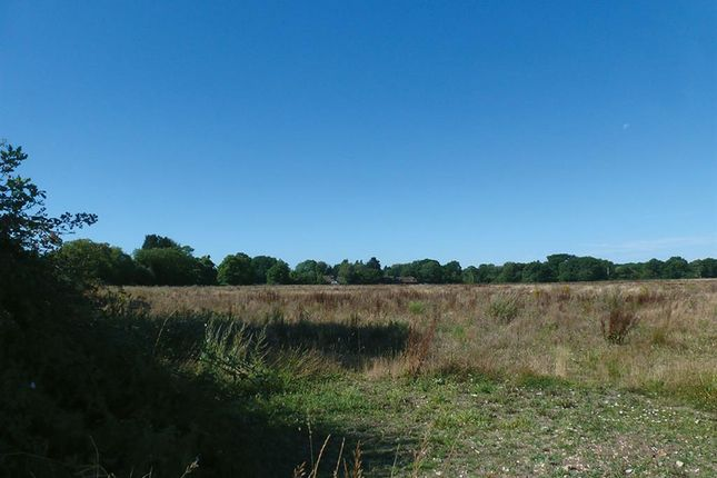 Thumbnail Land for sale in Hook Road, North Warnborough, Hook