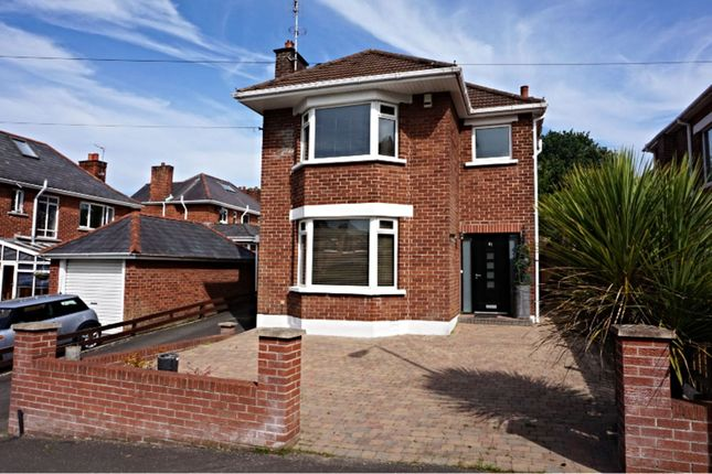 Thumbnail Detached house for sale in Norwood Drive, East Belfast
