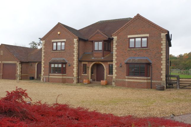 Thumbnail Detached house for sale in Main Road, Dyke, Bourne
