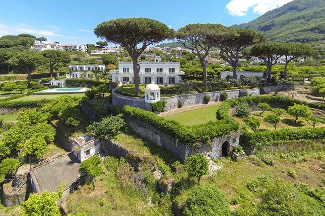 Apartments In Sorrento Italy For Sale - anunciosdelrecuerdo