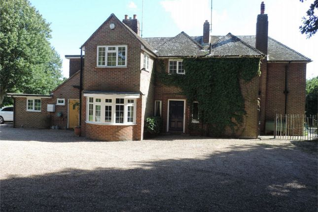 Thumbnail Detached house for sale in Wealden Way, Bexhill On Sea, East Sussex